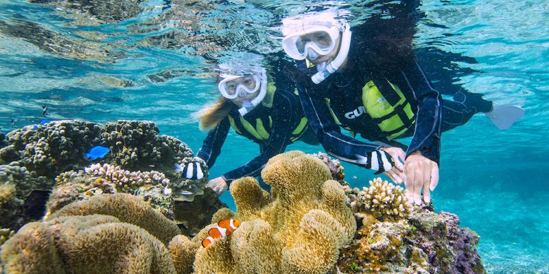 Snorkel Tour to Enjoy the Amazing Corals